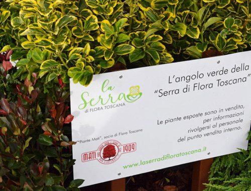 Flora-Toscana-MATI-1909-Fabbrica-Italiana-Contadina-Fico-Eataly-World
