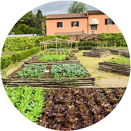 kitchen-garden-cultivation-construction-Tuscany