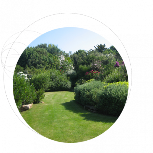 сады-проектное-бюро