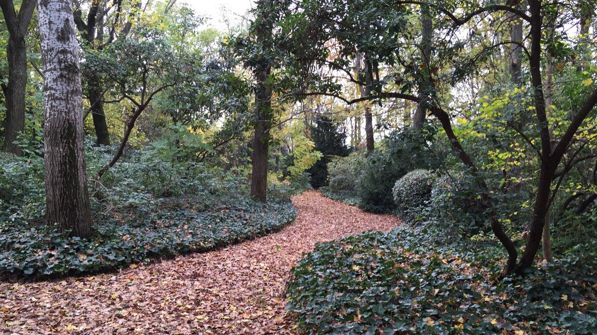 Parks-Umsetzung-Toskana