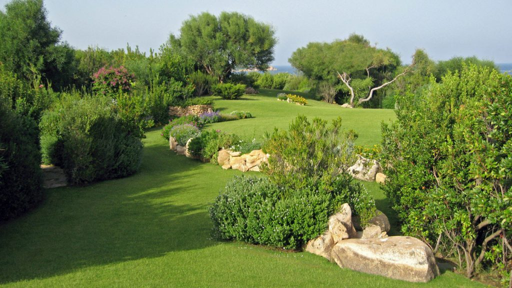 Progettazione realizzazione giardini e parchi mati 1909 for Rendering giardino
