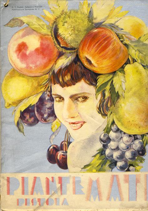 Растения MATI Каталог 1935 - 1936