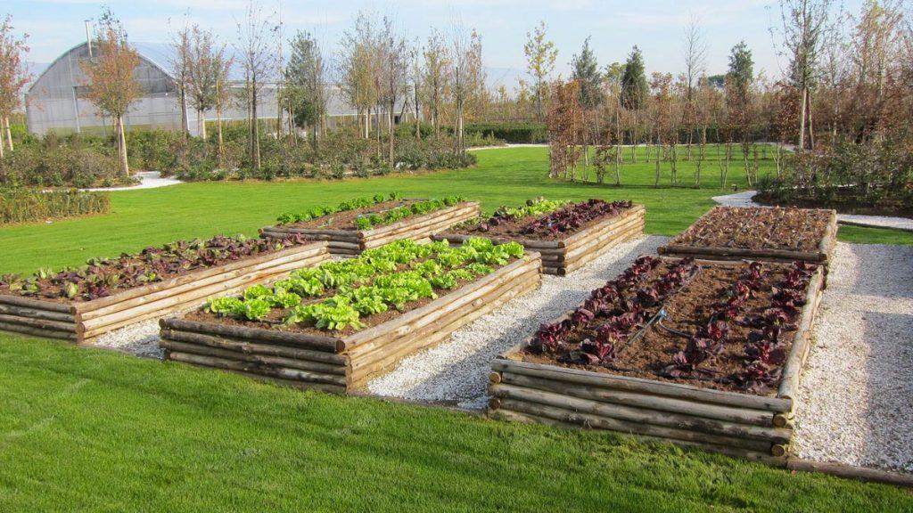Progettazione realizzazione piccoli giardini mati 1909 toscana - L orto in giardino ...