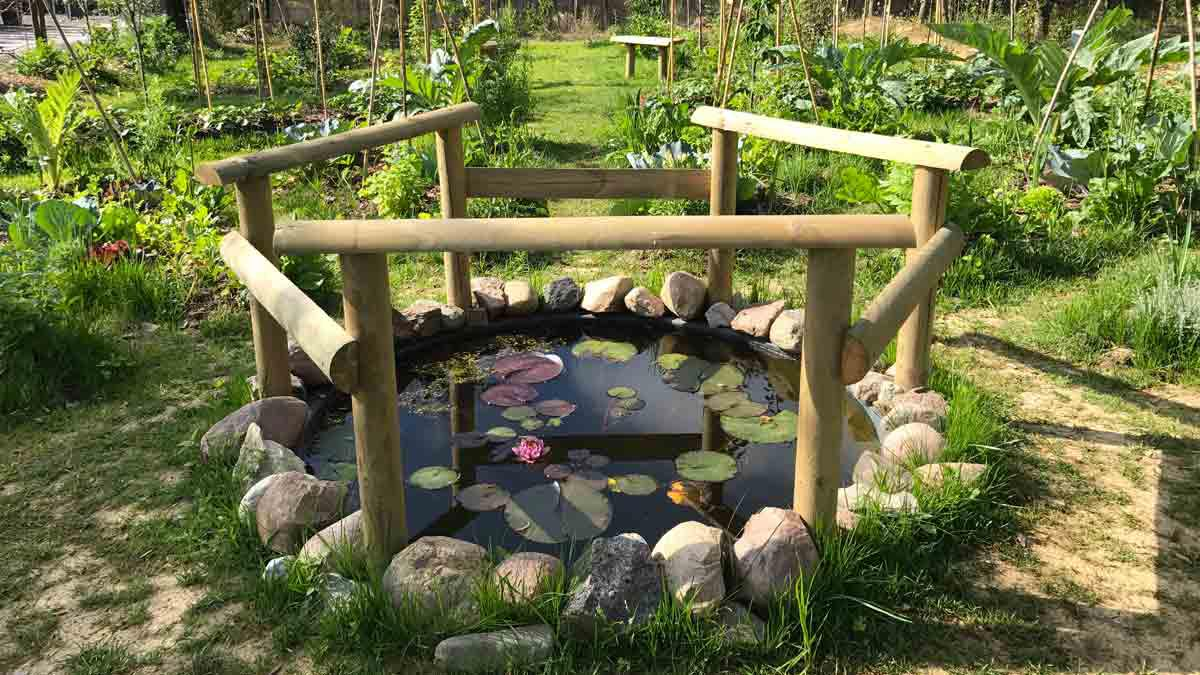 огород-сад-проектирование-создание