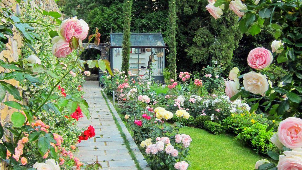 Progettazione realizzazione piccoli giardini mati 1909 for Giardini piccoli