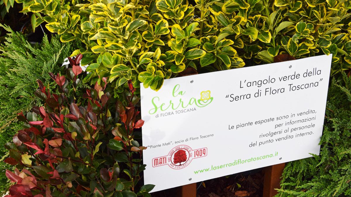 allestimento-giardini-temporanei-per-FICO