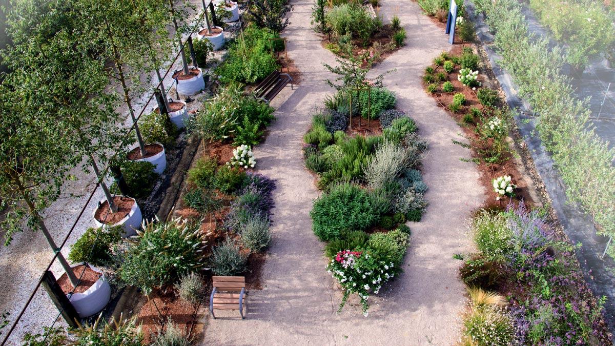 Entwurf-therapeutischer-Garten