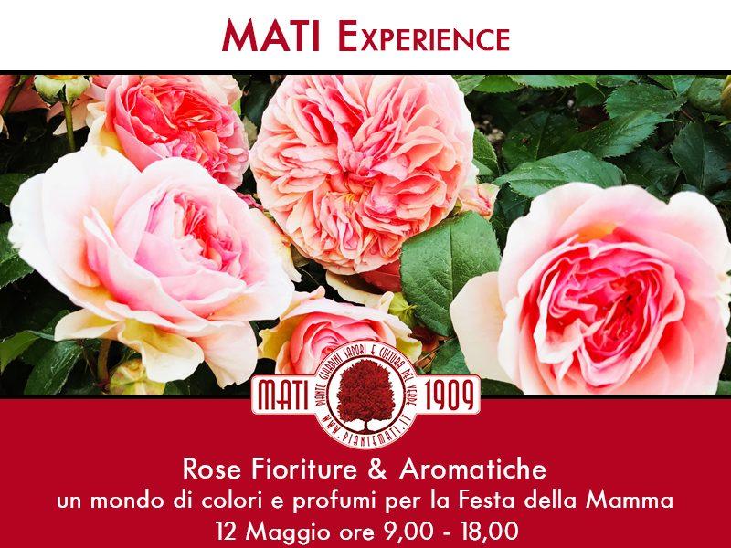 Rose-Fioriture-&-Aromatiche