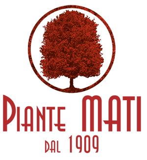 Piante-Mati-1909