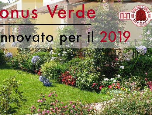 bonus-verde-2019