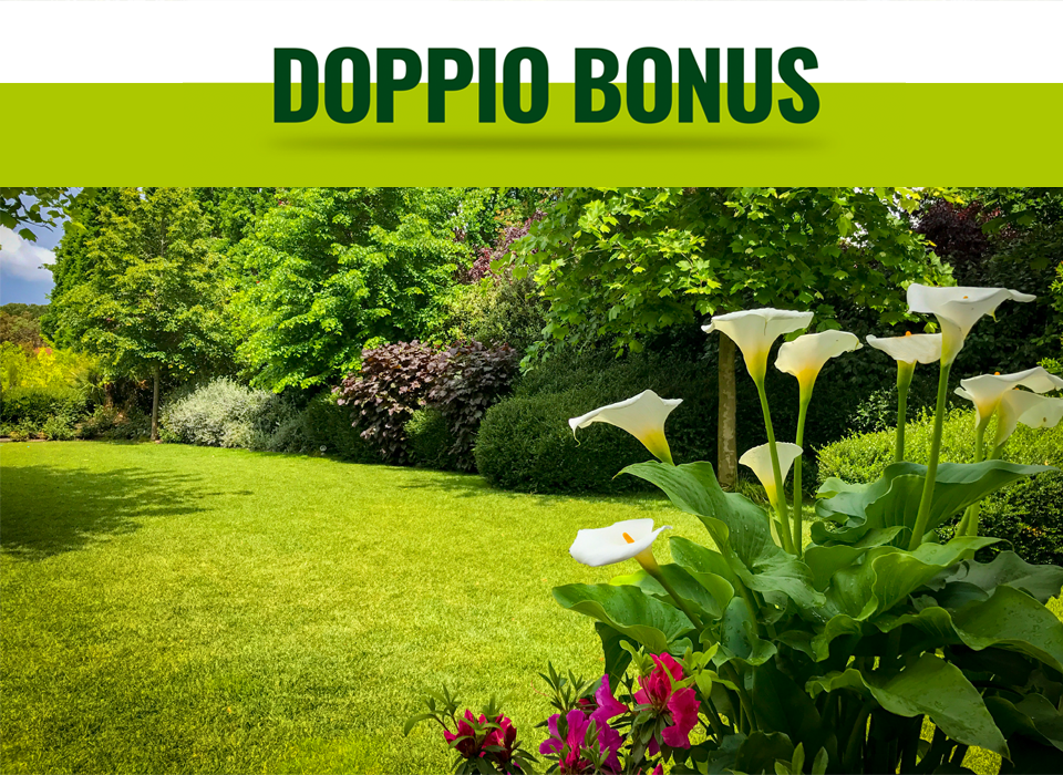 bonus-verde-mobile