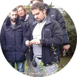 progettazione-coltivazione-manutenzione-piante-2