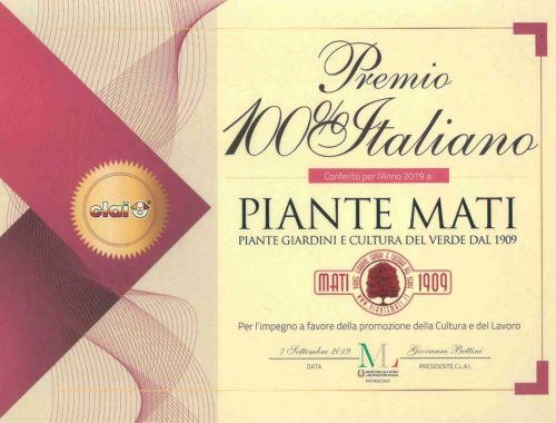 CLAI-Premio-100-%-Italiano