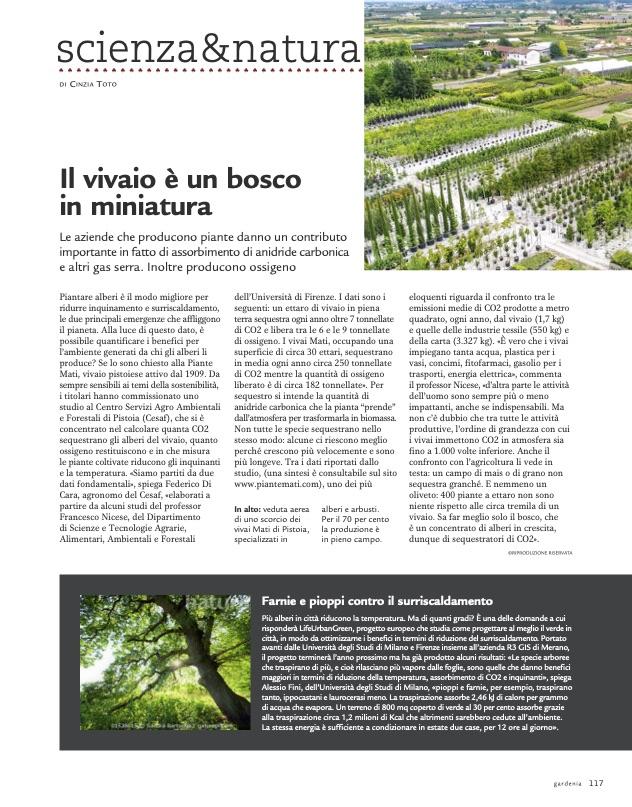 Articolo-Gardenia